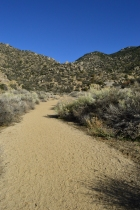 The Sandia Foothills Open Space