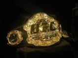 UFC Title